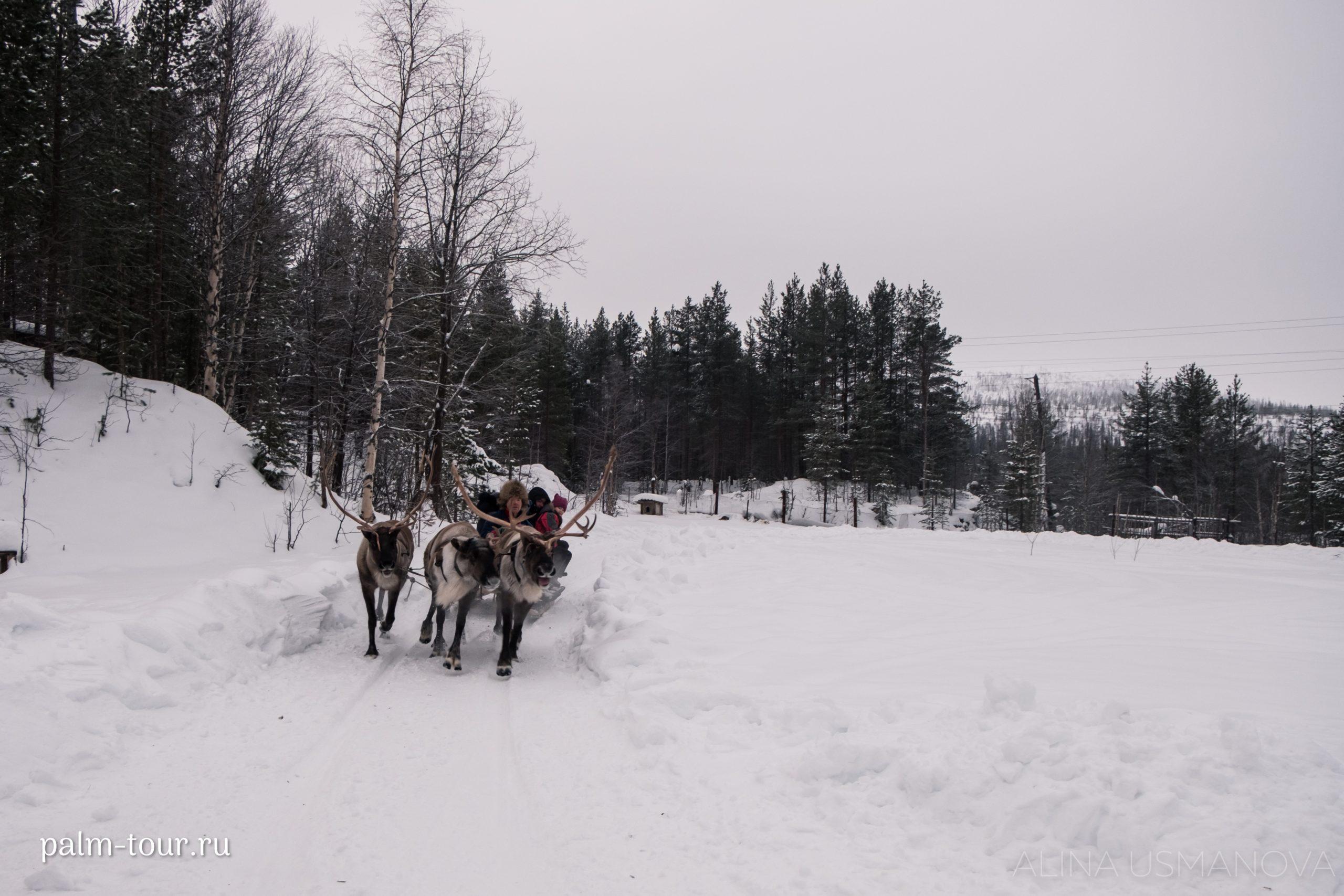 Мурманск – этнодеревня