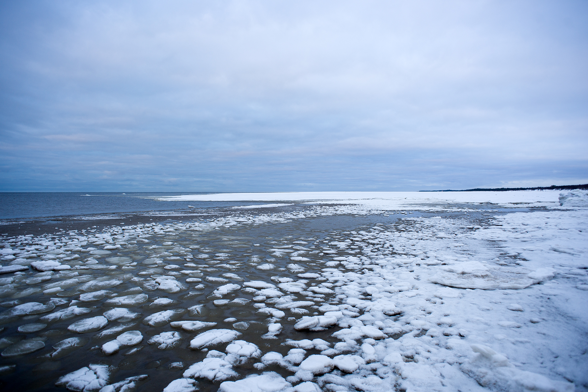 Белое море